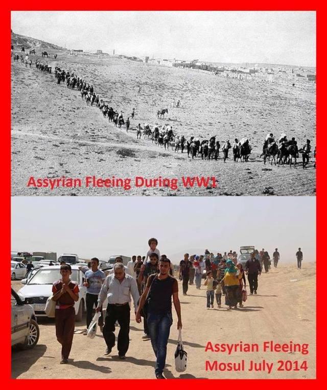 assyrierflyr